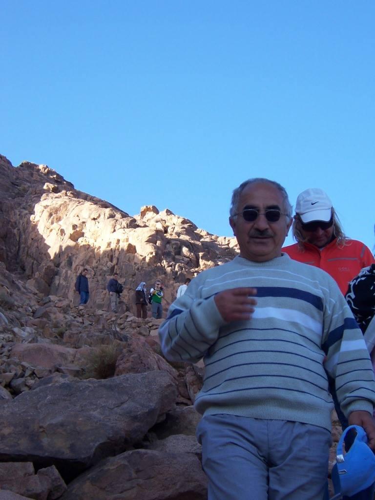 Mount Sinai - 2016 - 2